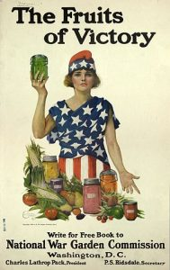 WWI Fruits of Victory