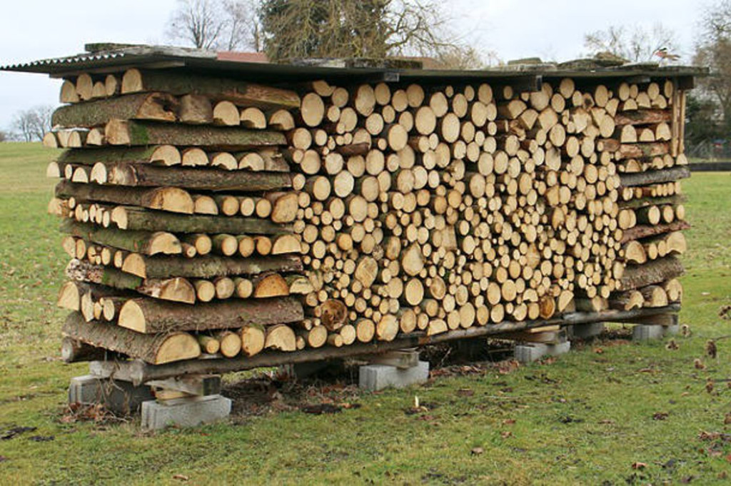 Firewood stacked in the open