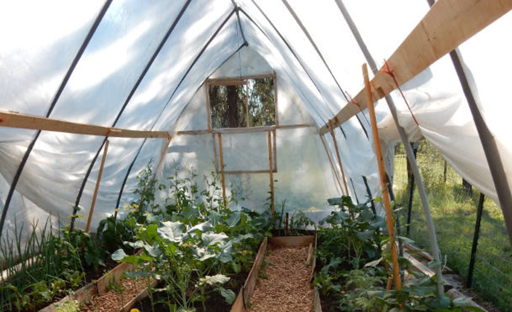 window in hoop house